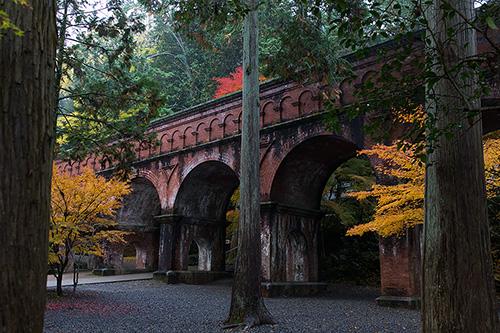 紅葉の京都で巡る 京アニ作品舞台探訪の旅